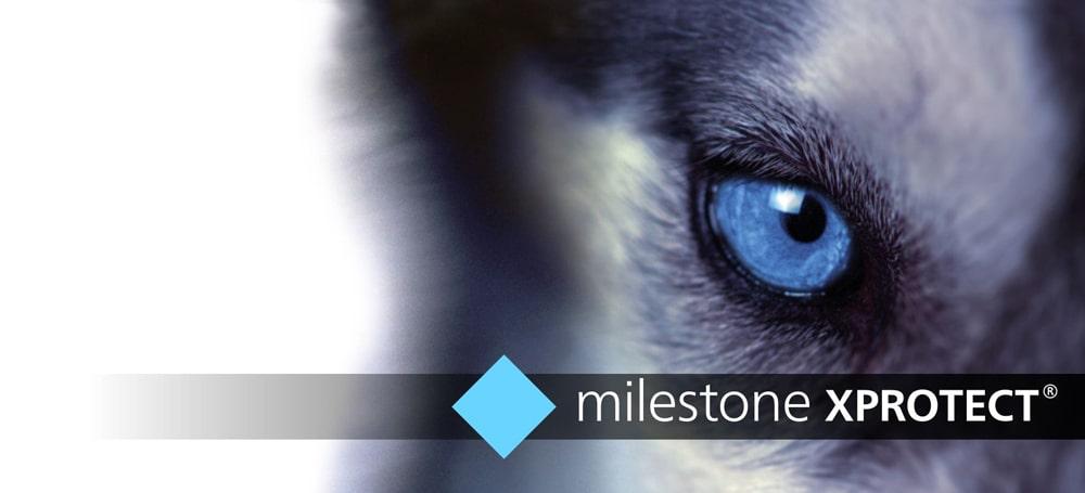 کرک نرم افزار مایلستون Milestone لایسنس